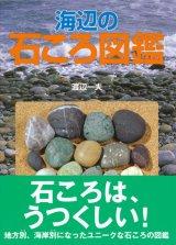 【海辺の石ころ図鑑】渡辺一夫