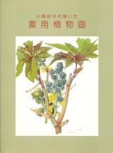 【小磯良平の描いた薬用植物画展】カタログ・図録