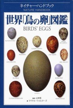 画像1: 【世界「鳥の卵」図鑑】マイケル・ウォルターズ