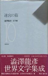 【迷宮の箱 澁澤龍彦文学館10】