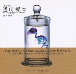 画像1: 【[新世界]透明標本】冨田伊織